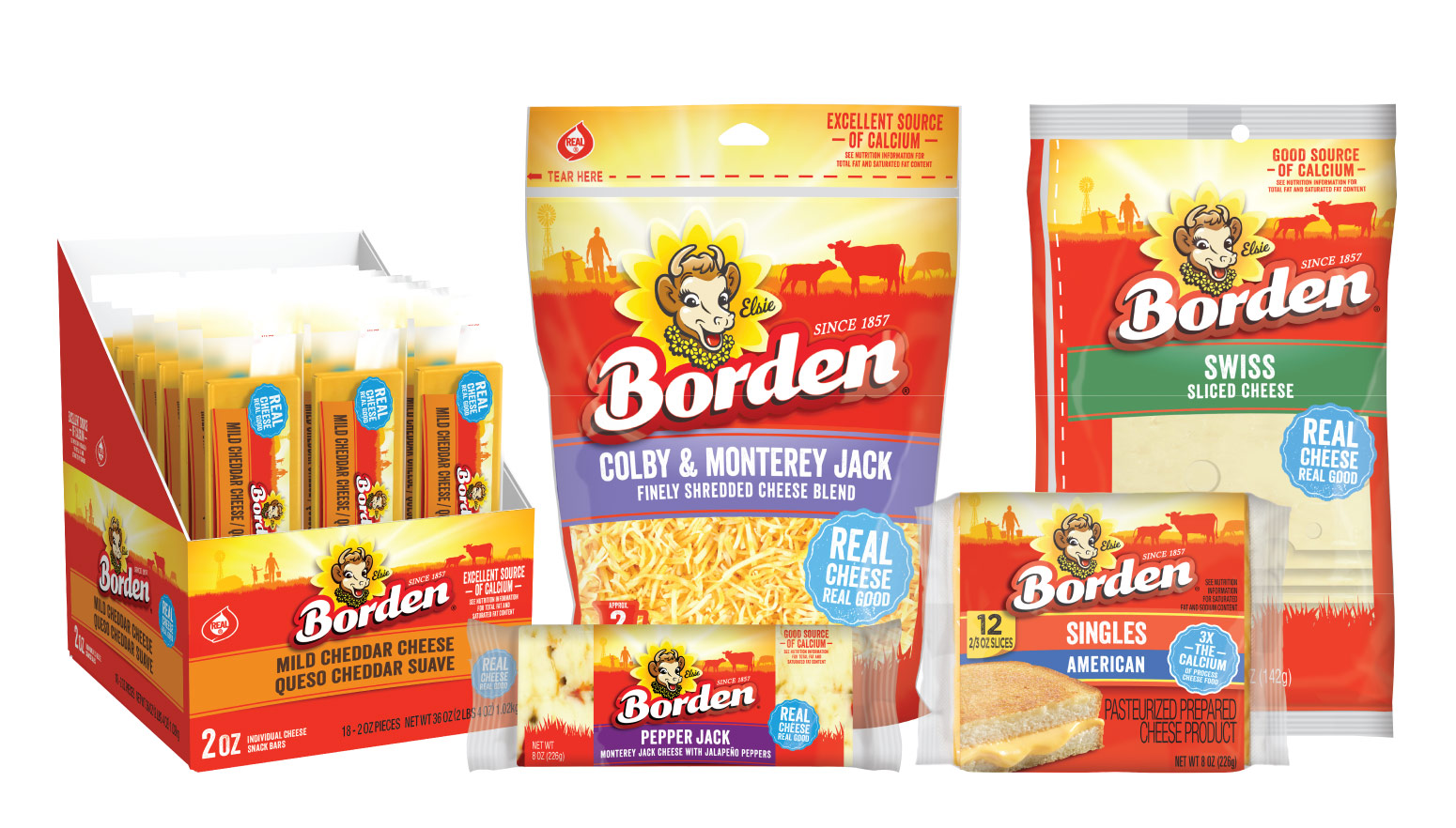 Borden Packaging Transition