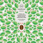 Lundmark's favorite visual storytelling website design - coffee